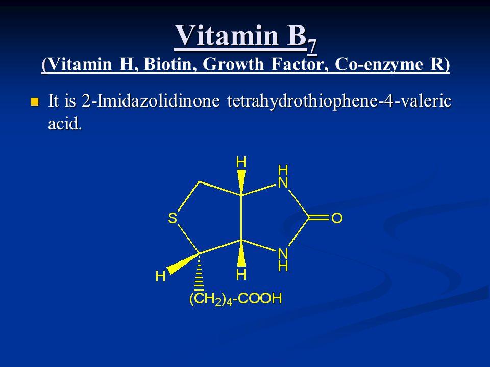 Vitamin B7 (Vitamin H, Biotin, Growth Factor, Co-enzyme R)