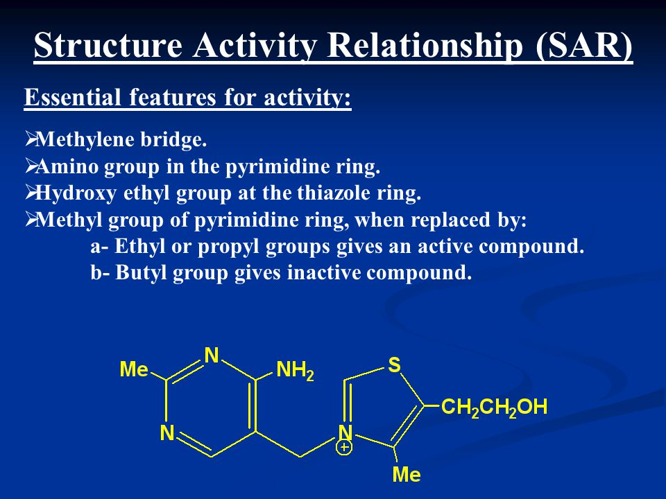 Structure Activity Relationship (SAR)