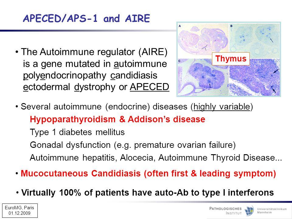 APECED/APS-1 and AIRE The Autoimmune regulator (AIRE)