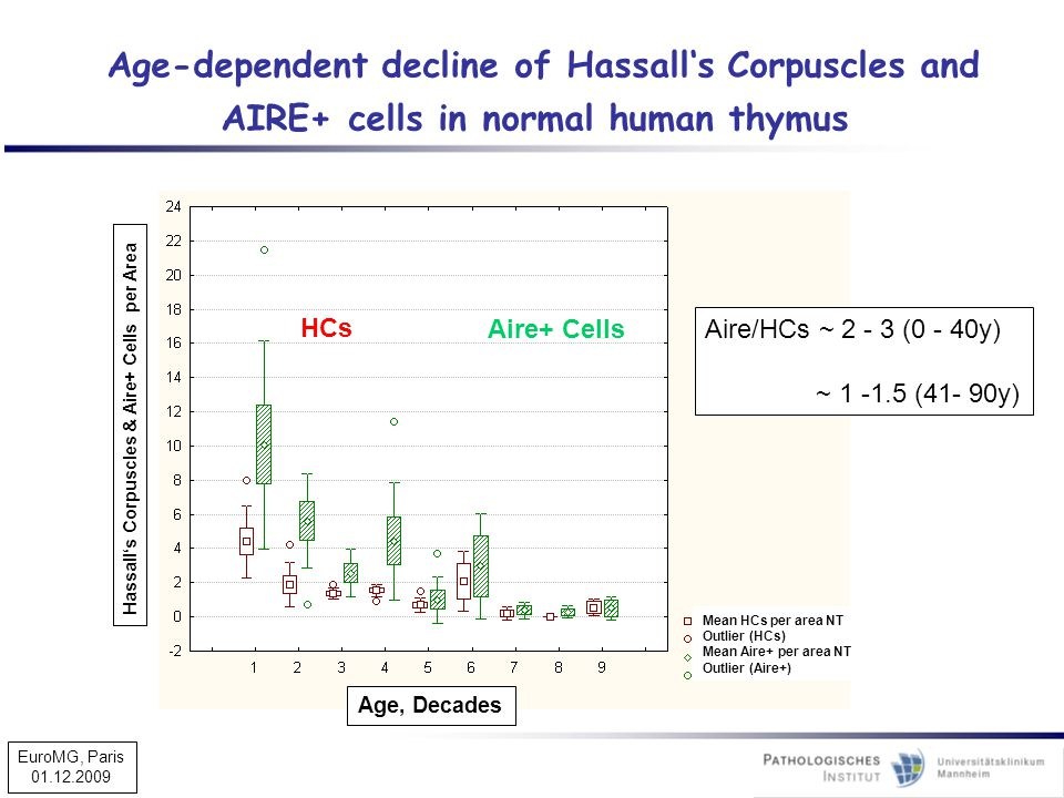 Age-dependent decline of Hassall's Corpuscles and