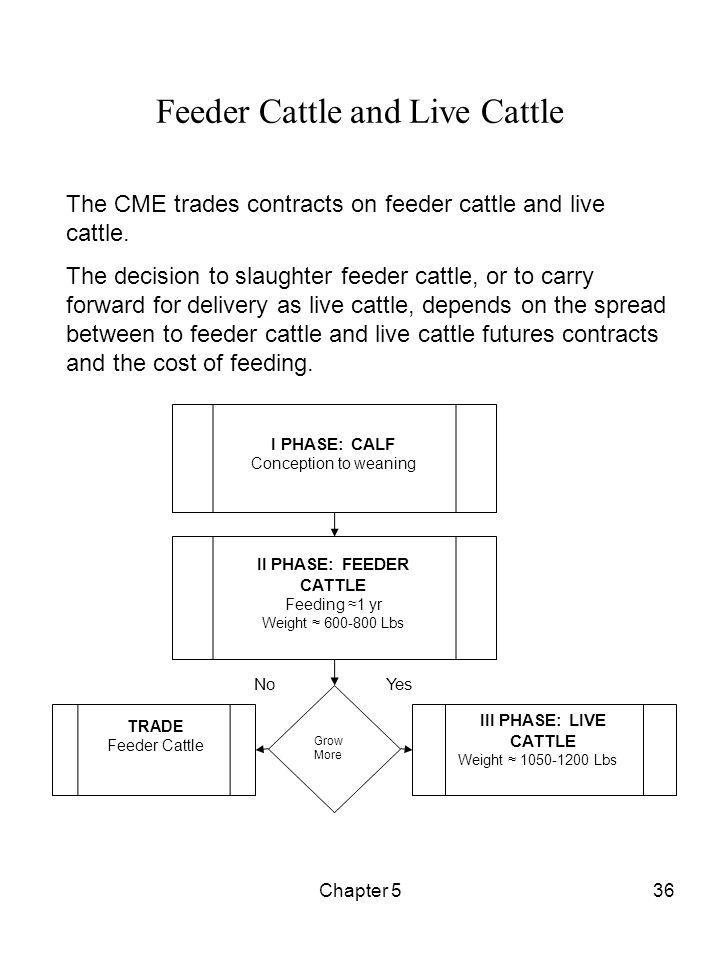 Feeder Cattle and Live Cattle