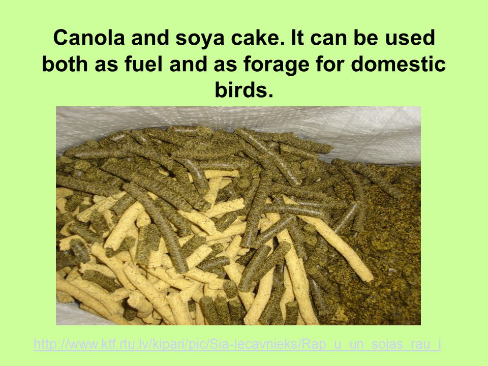 Canola and soya cake. It can be used both as fuel and as forage for domestic birds.