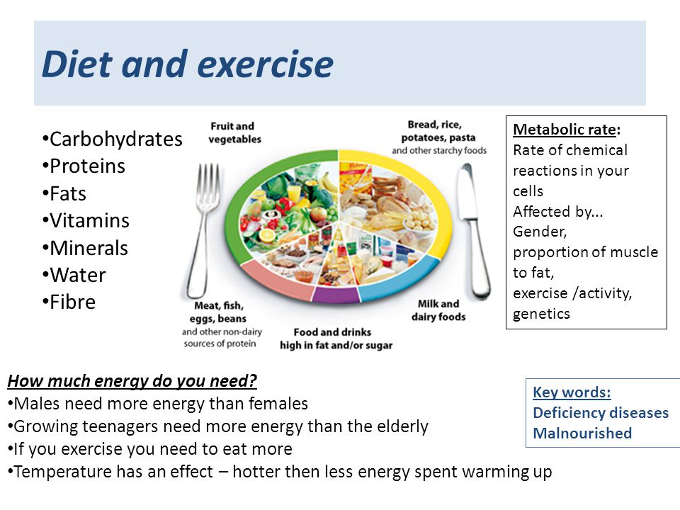 exercise for healthy lifestyle essay