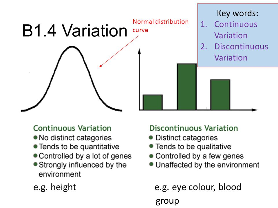 B1.4 Variation e.g. height e.g. eye colour, blood group Key words:
