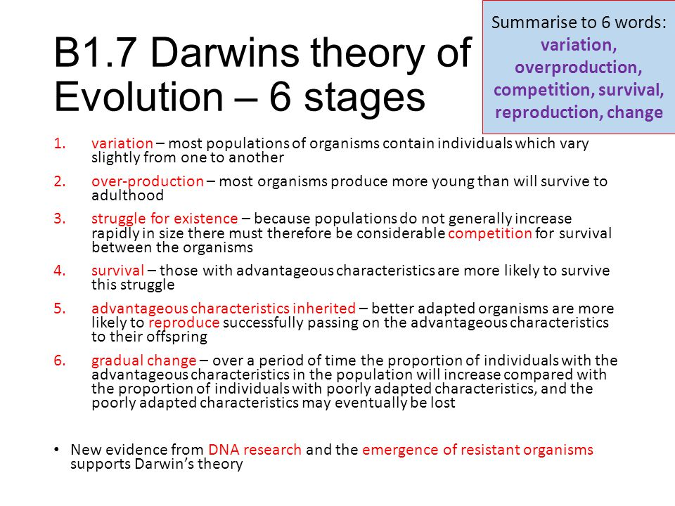 B1.7 Darwins theory of Evolution – 6 stages