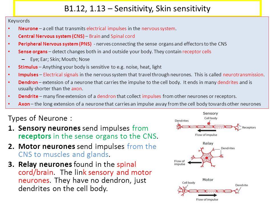 B1.12, 1.13 – Sensitivity, Skin sensitivity