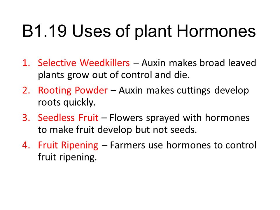 B1.19 Uses of plant Hormones