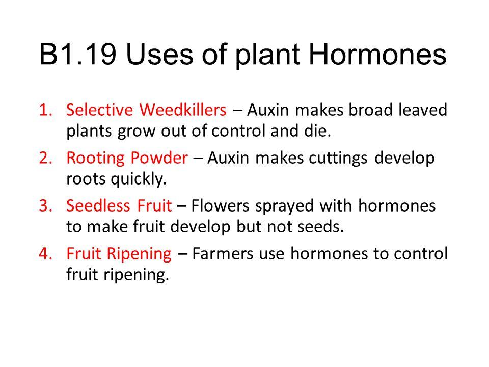 B1.19 Uses of plant Hormones