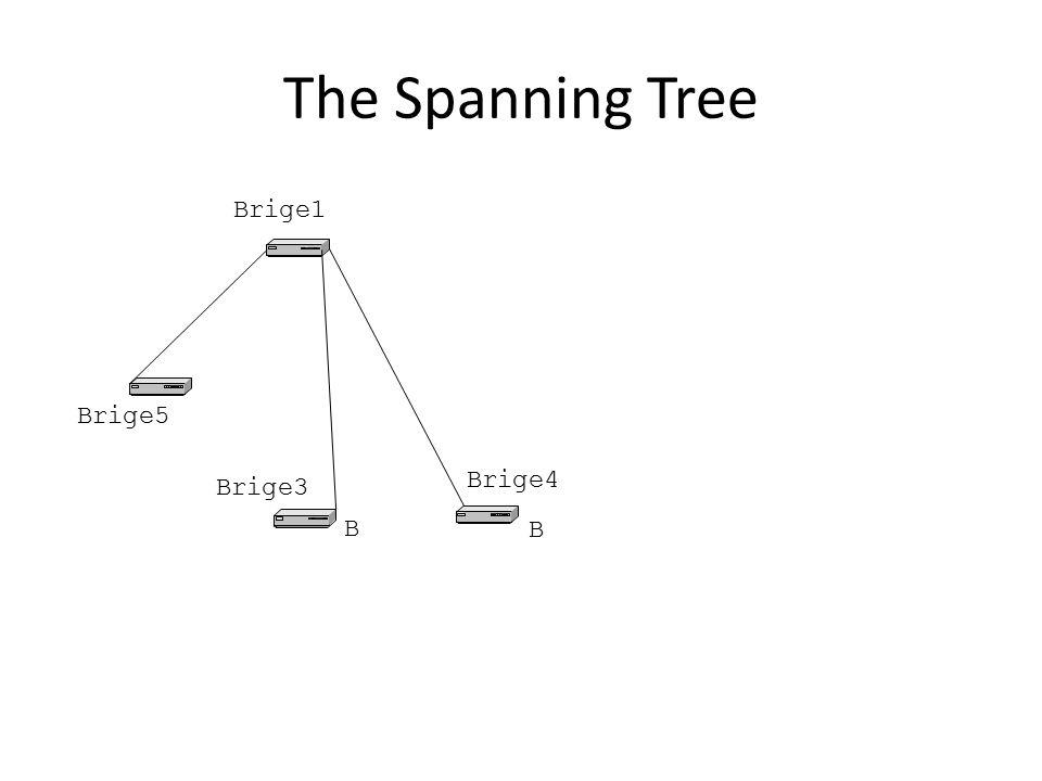 The Spanning Tree Brige1 Brige5 Brige3 Brige4 B