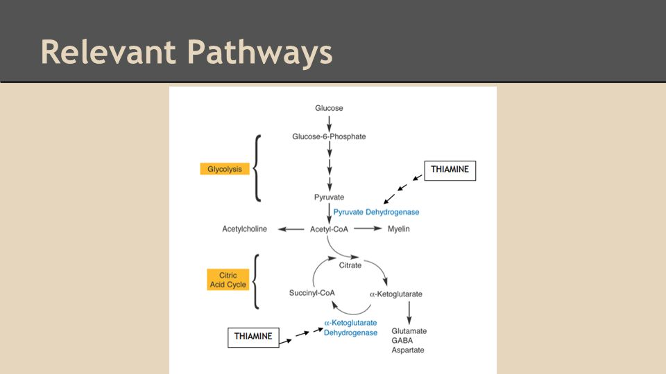 Relevant Pathways
