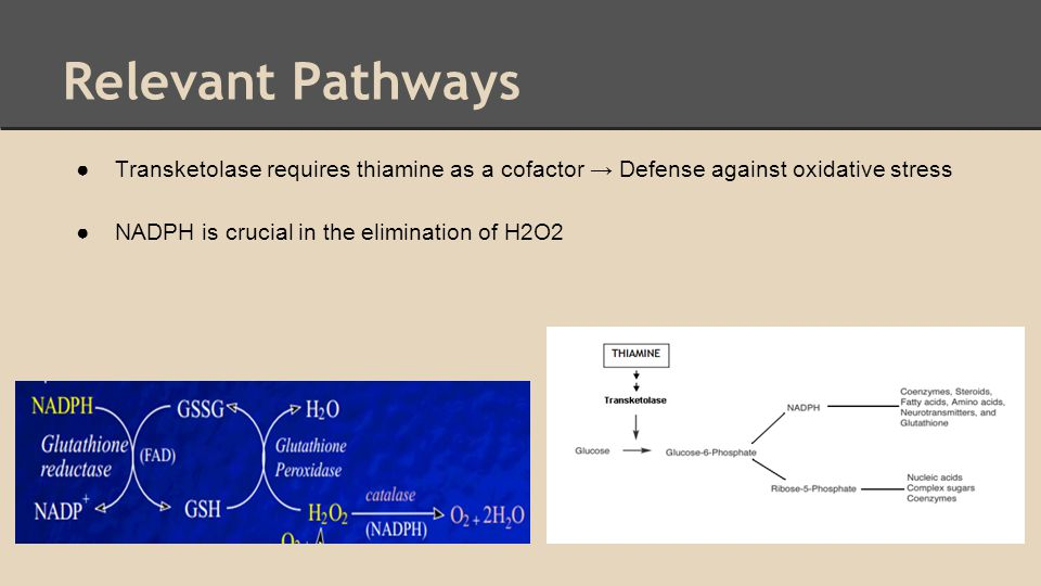 Relevant Pathways Transketolase requires thiamine as a cofactor → Defense against oxidative stress.