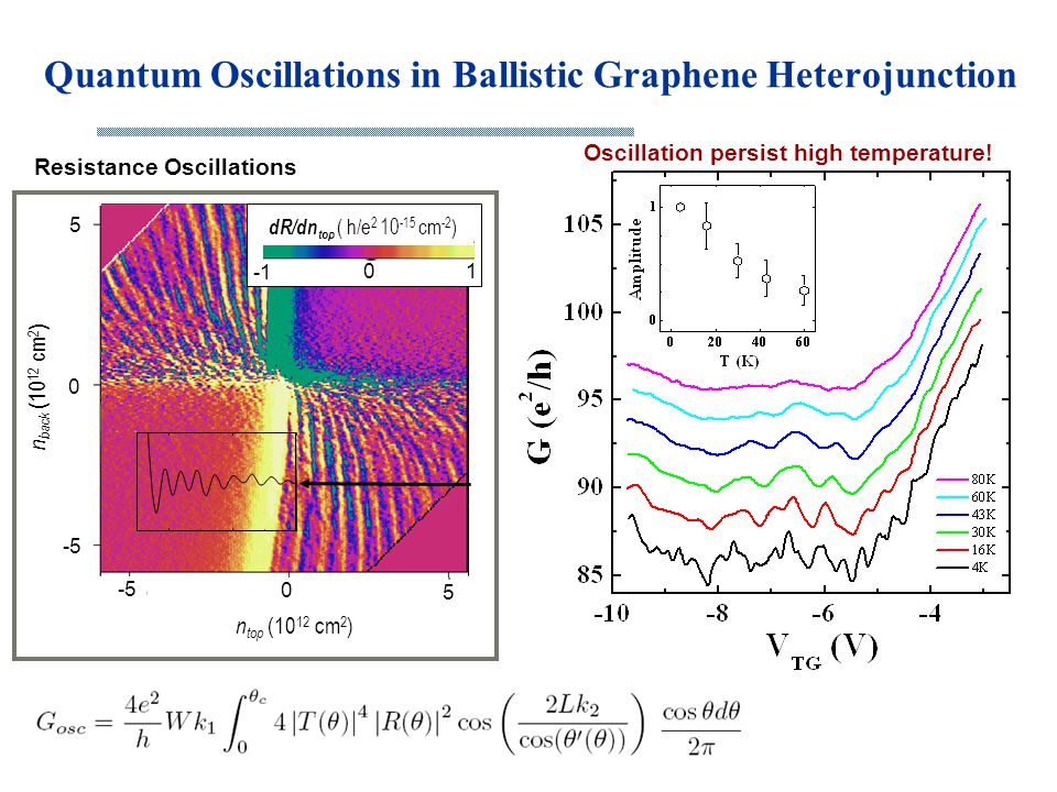 Quantum Oscillations in Ballistic Graphene Heterojunction