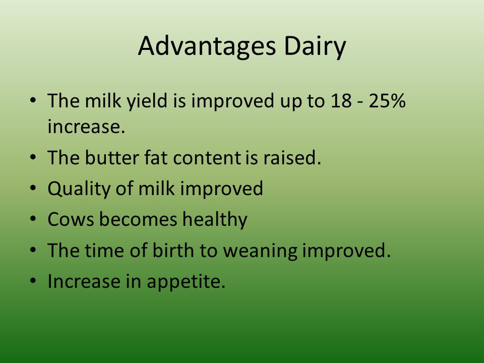 Advantages Dairy The milk yield is improved up to 18 - 25% increase.