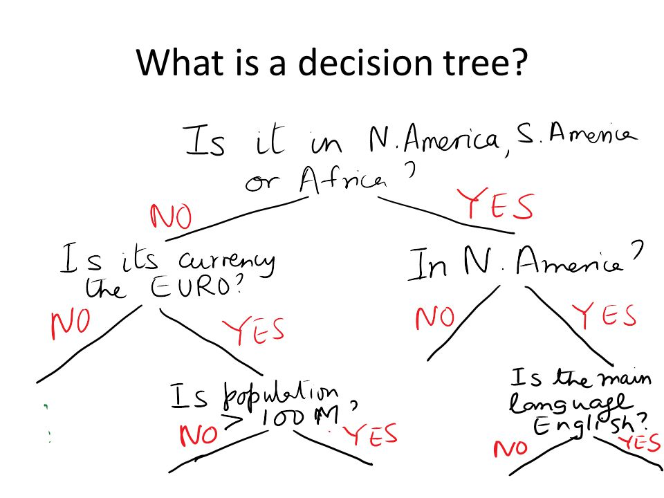 What is a decision tree