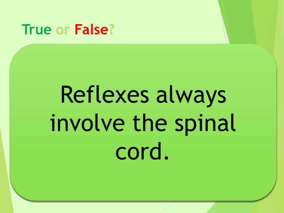 Reflexes always involve the spinal cord.