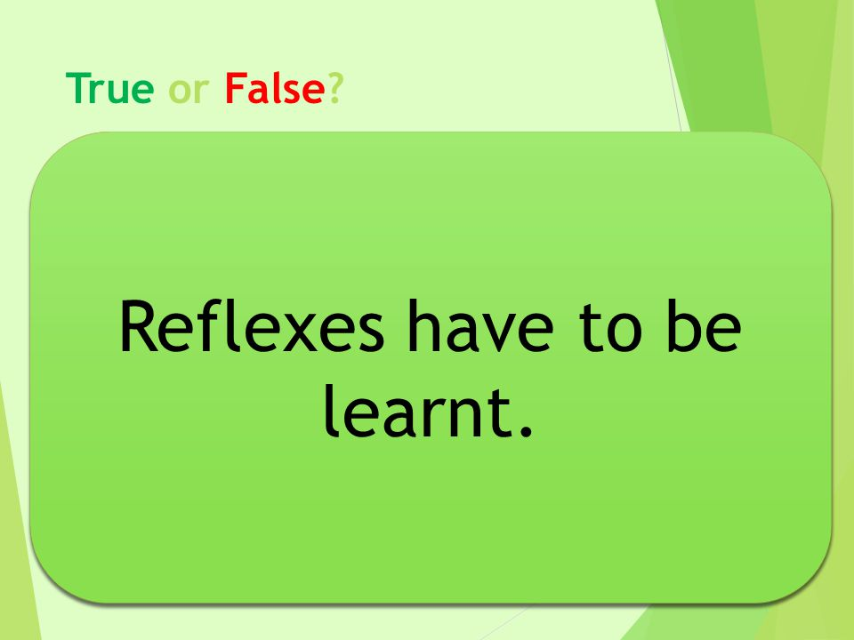 Reflexes have to be learnt. Reflexes have to be learnt.