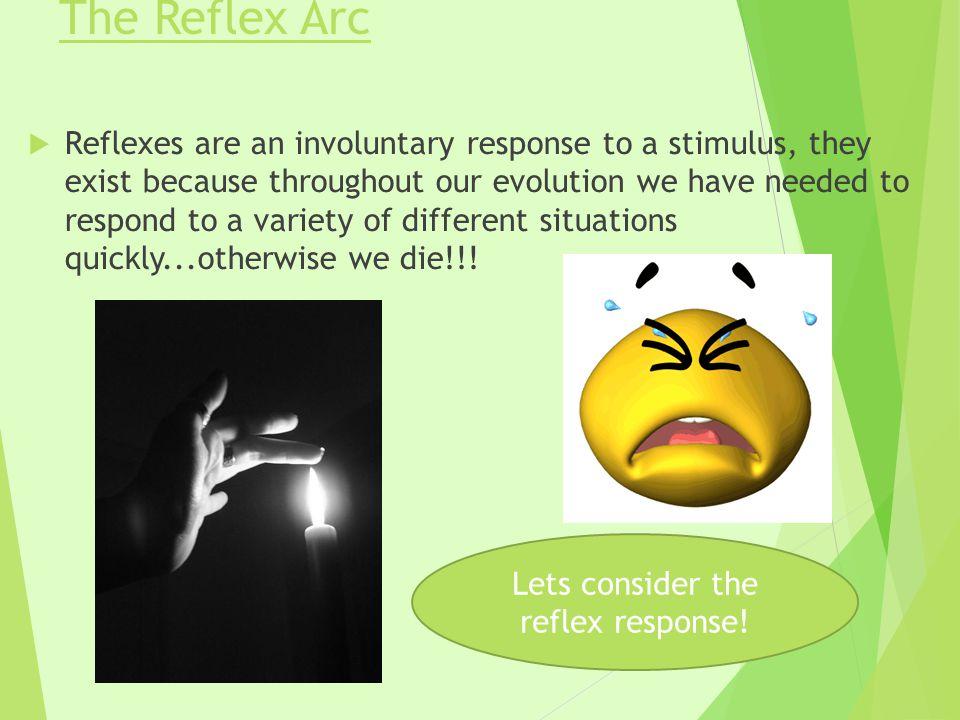 Lets consider the reflex response!