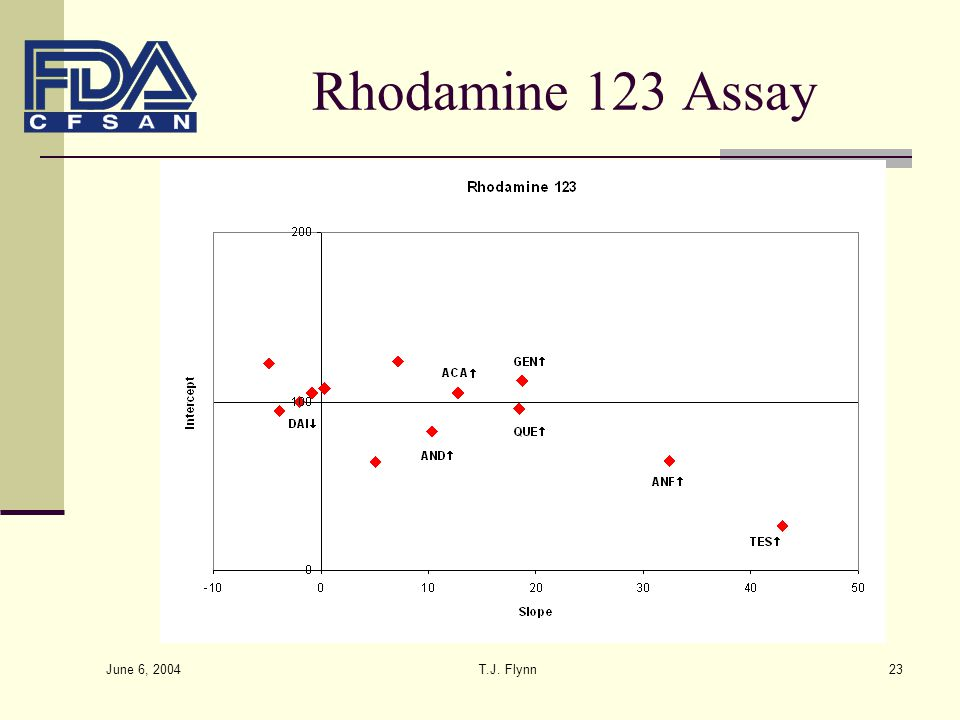 Rhodamine 123 Assay June 6, 2004 T.J. Flynn