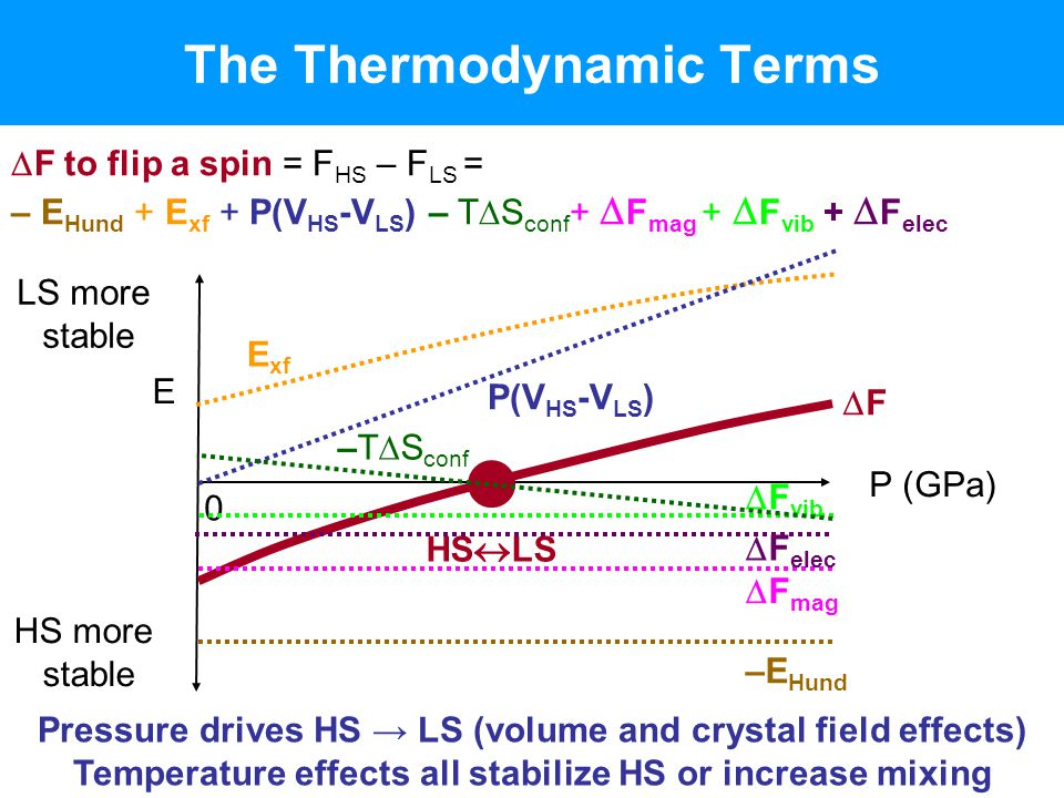The Thermodynamic Terms