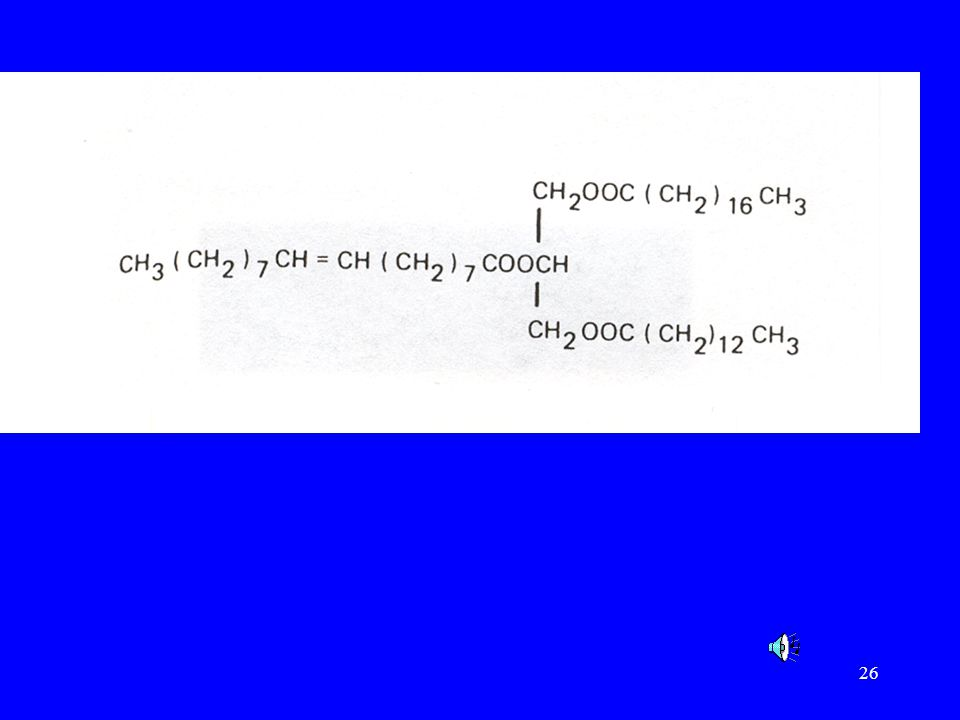 This is an example of a triglyceride