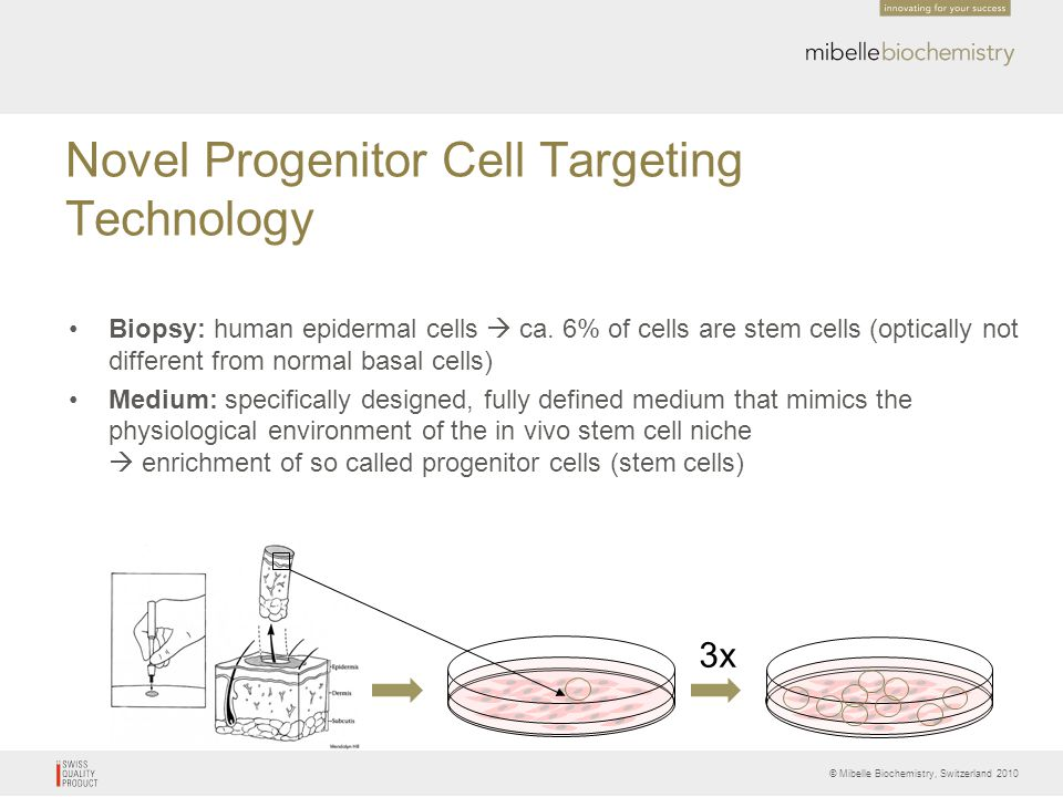 Novel Progenitor Cell Targeting Technology