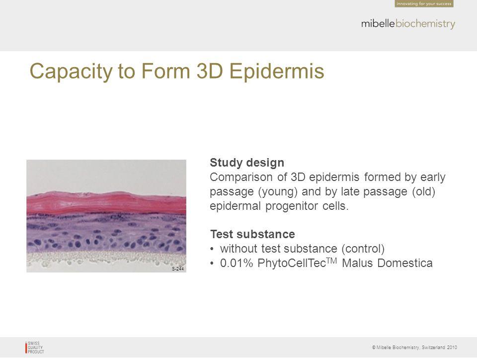 Capacity to Form 3D Epidermis