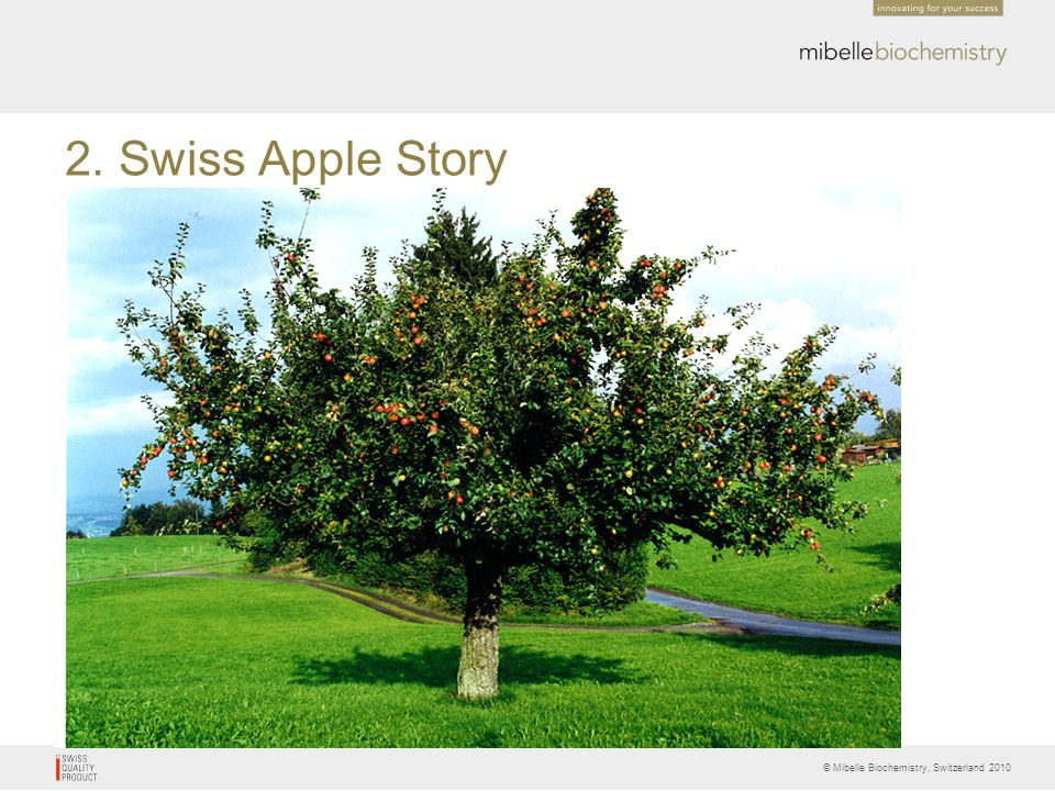 2. Swiss Apple Story