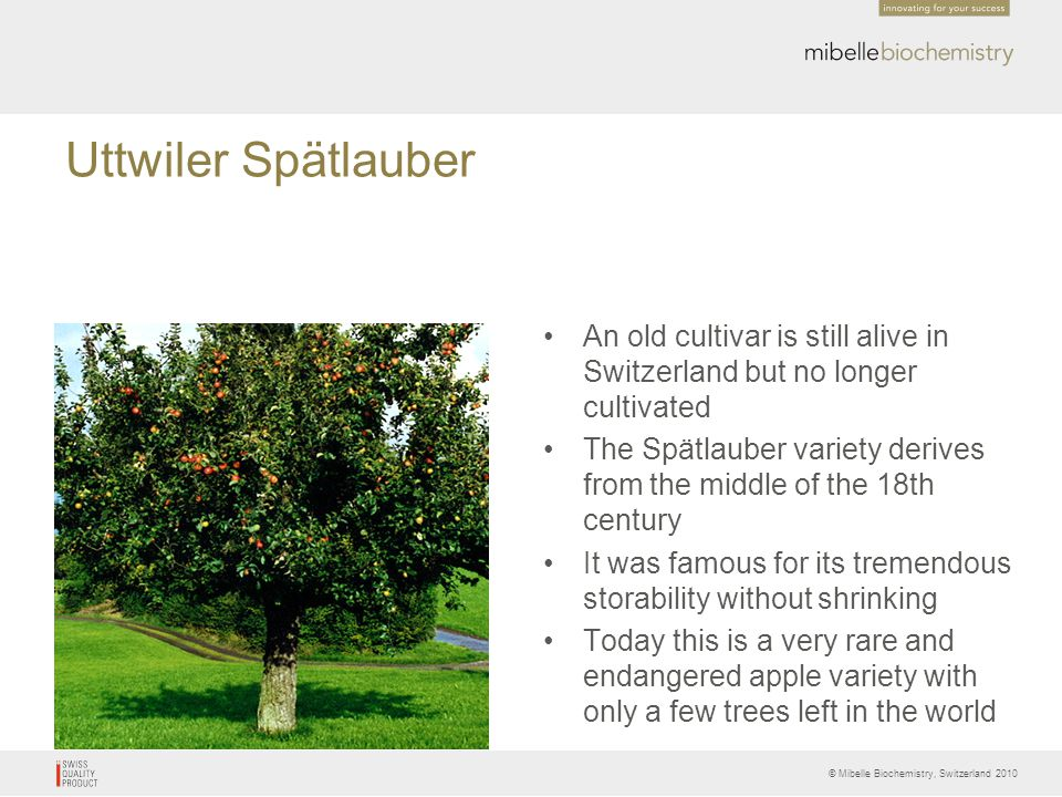 Phytocelltectm malus domestica ppt video online download for Domestica in svizzera