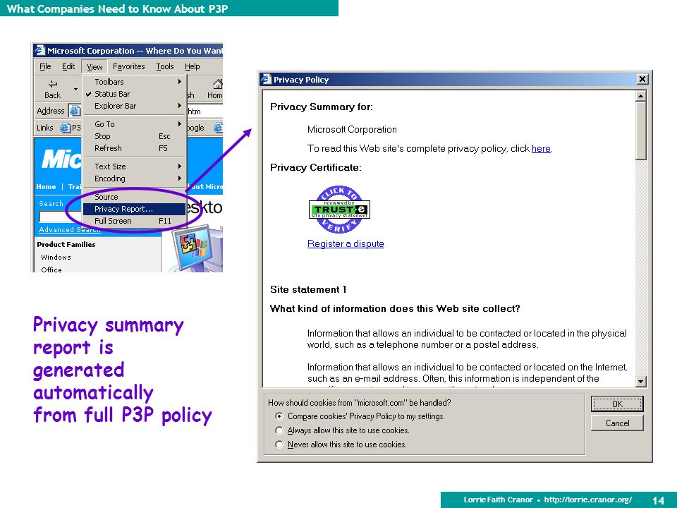 Privacy summary report is generated automatically from full P3P policy