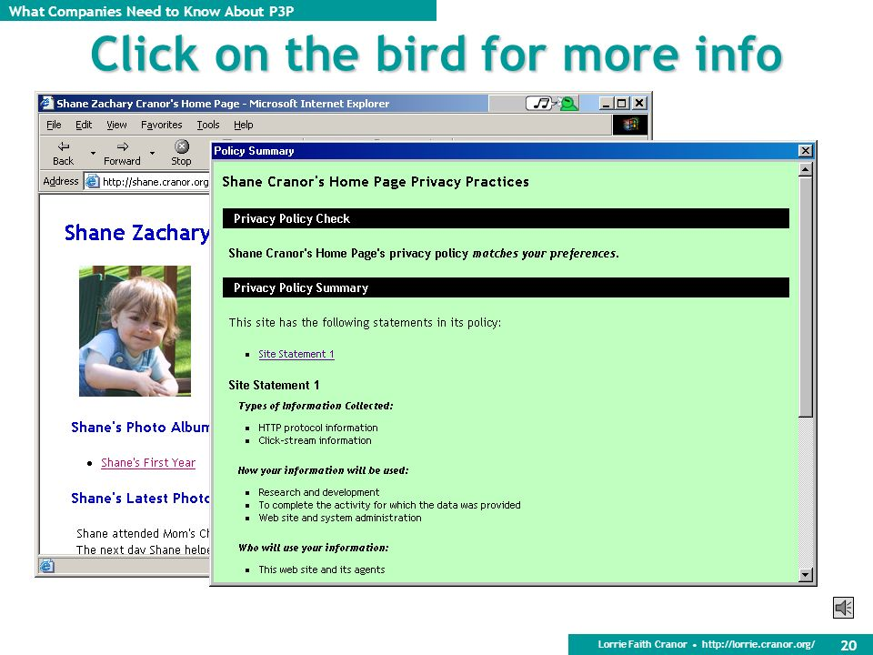 Click on the bird for more info