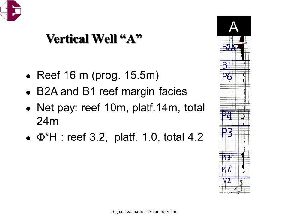A Vertical Well A Reef 16 m (prog. 15.5m)