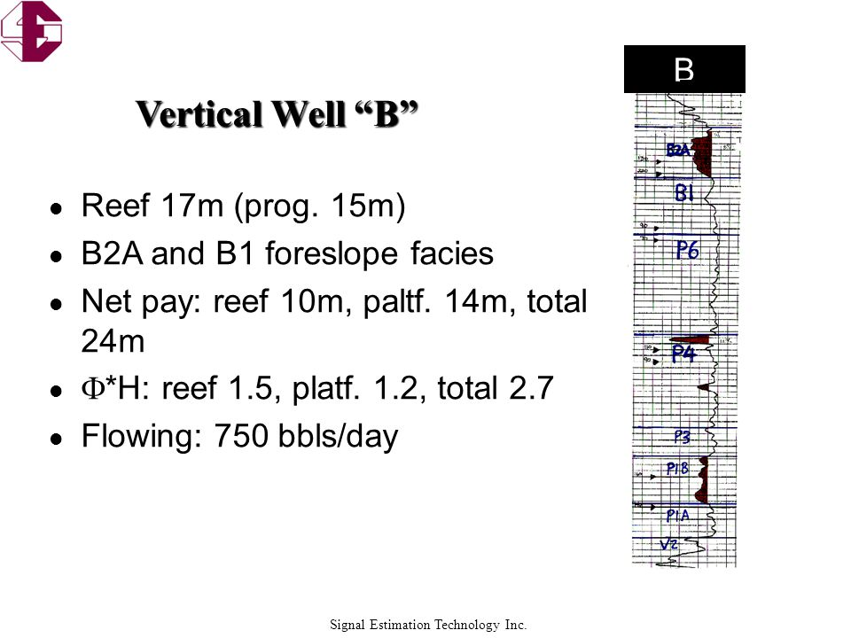 Vertical Well B B Reef 17m (prog. 15m) B2A and B1 foreslope facies