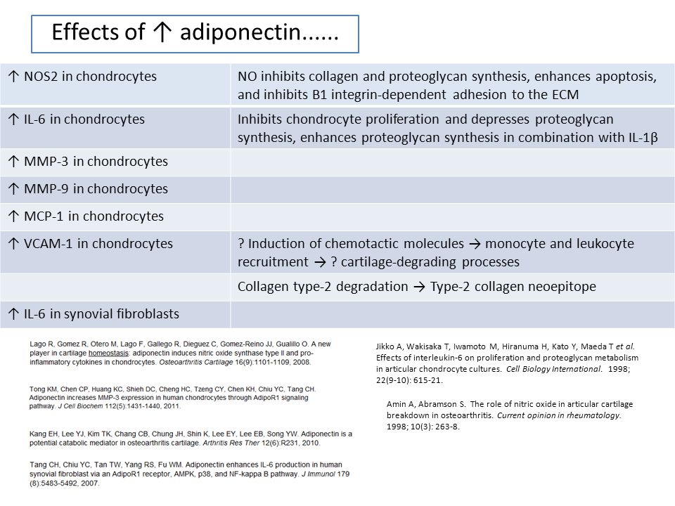 Effects of ↑ adiponectin......