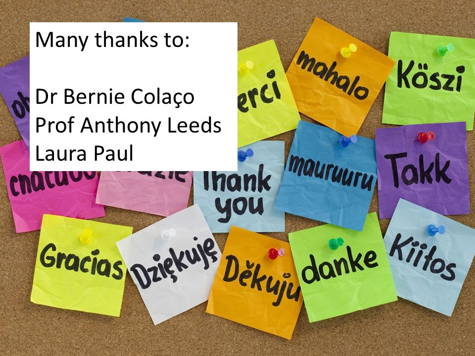 Many thanks to: Dr Bernie Colaço Prof Anthony Leeds Laura Paul