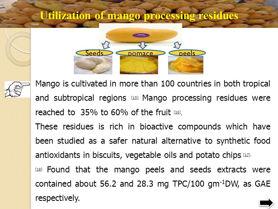 Utilization of mango processing residues
