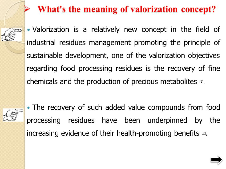 What s the meaning of valorization concept