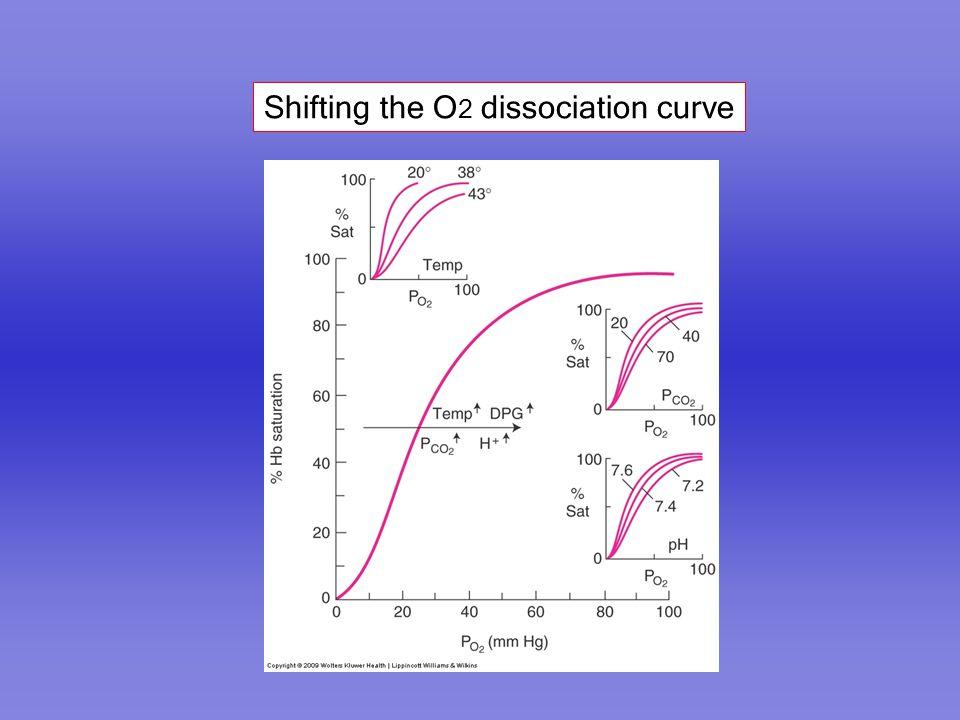 Shifting the O2 dissociation curve