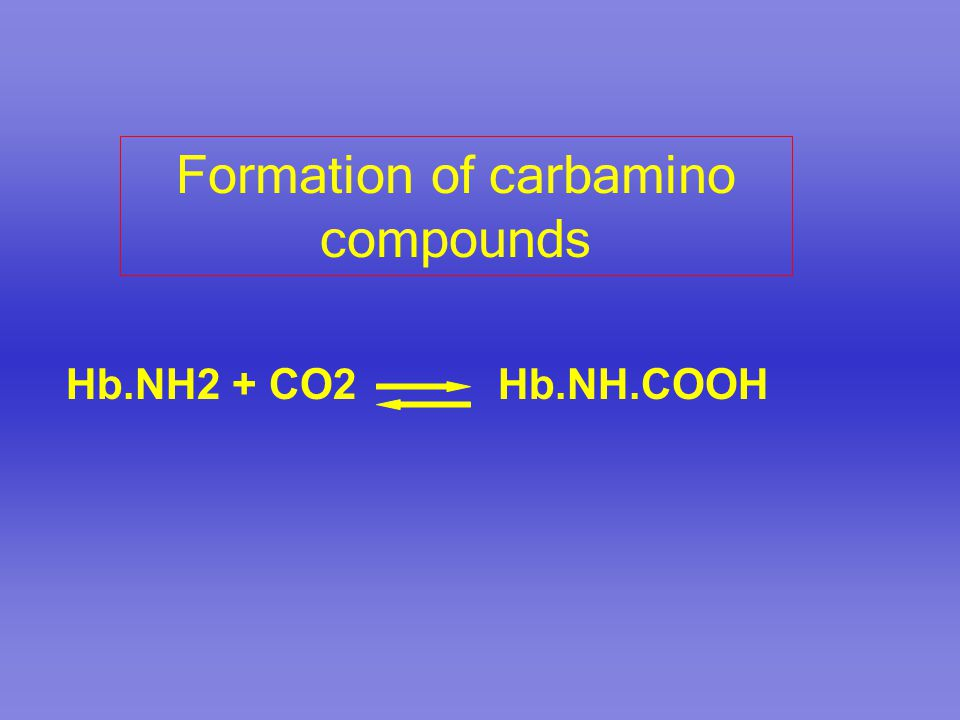 Formation of carbamino compounds