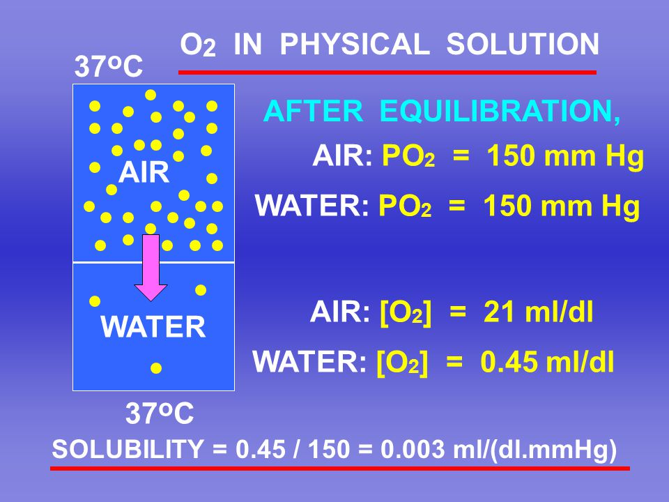 O2 IN PHYSICAL SOLUTION 37oC AFTER EQUILIBRATION, AIR: PO2 = 150 mm Hg