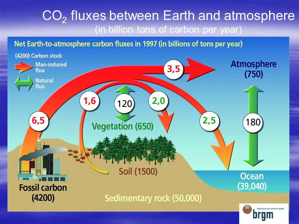 CO2 fluxes between Earth and atmosphere