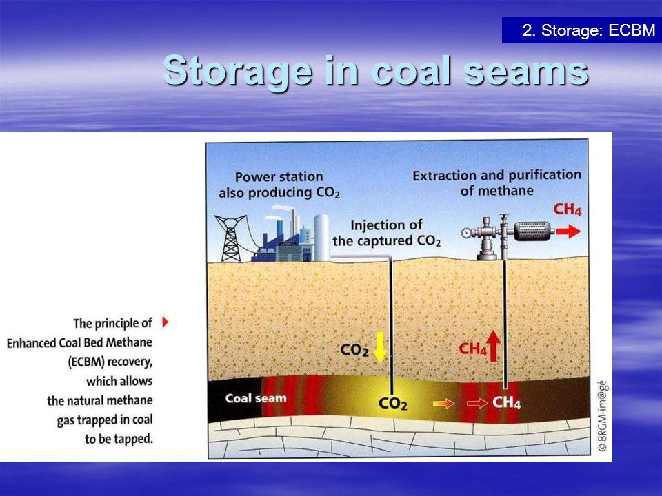2. Storage: ECBM Storage in coal seams