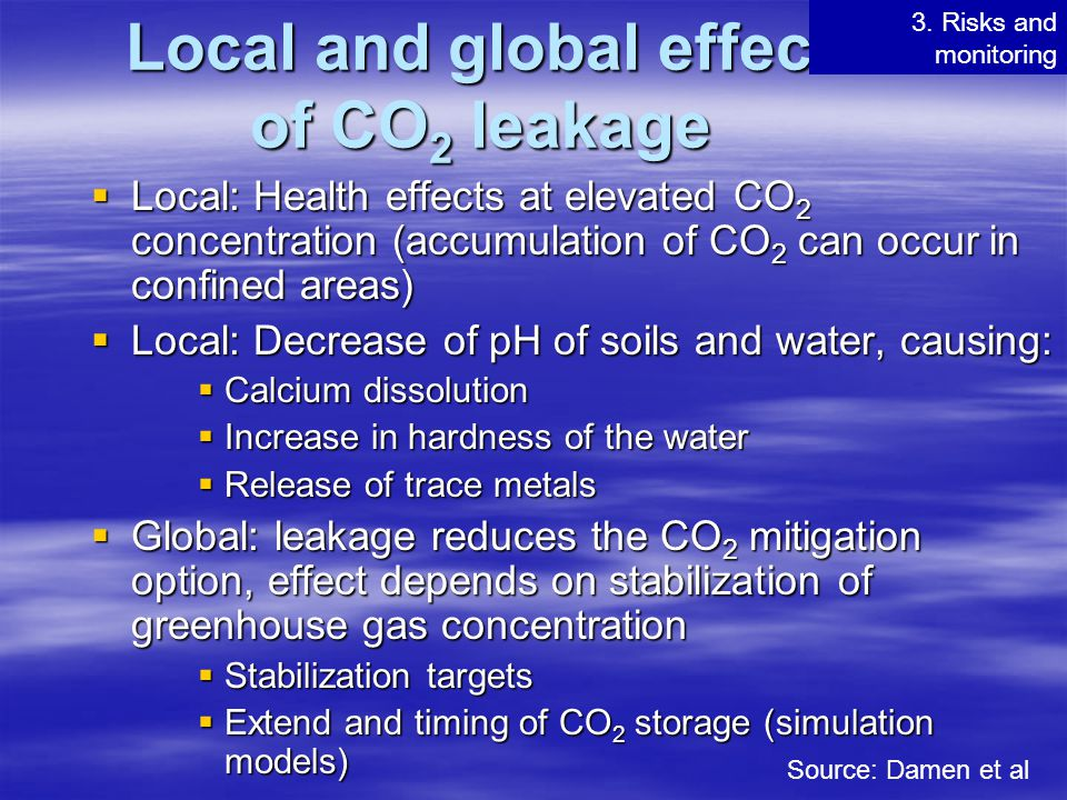 Local and global effect of CO2 leakage