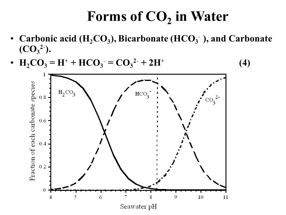 Forms of CO2 in Water Carbonic acid (H2CO3), Bicarbonate (HCO3- ), and Carbonate (CO32-).