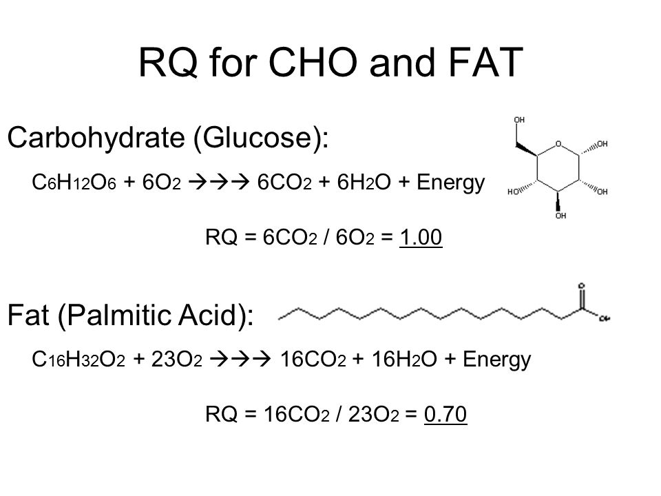 RQ for CHO and FAT Carbohydrate (Glucose): Fat (Palmitic Acid):