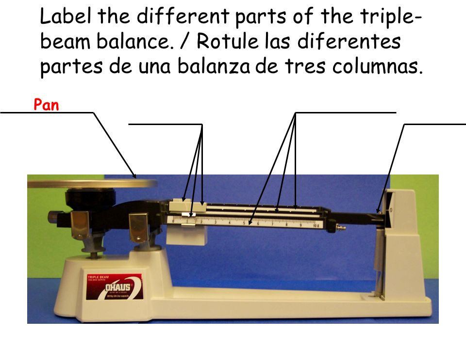 Label the different parts of the triple-beam balance