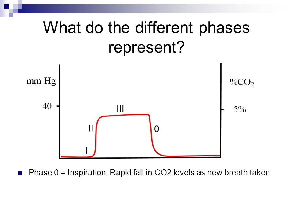 What do the different phases represent