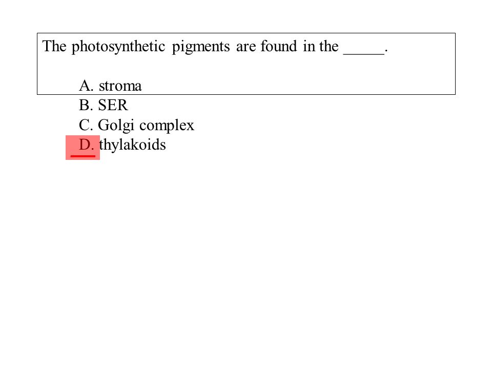 The photosynthetic pigments are found in the _____. A. stroma B. SER C