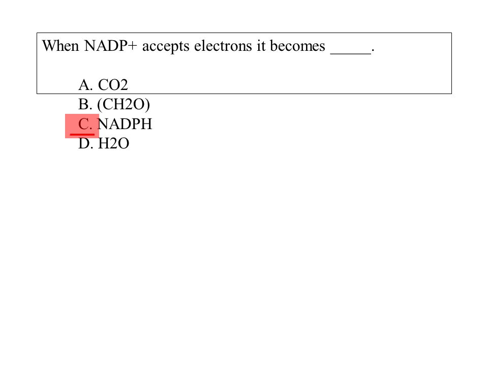 When NADP+ accepts electrons it becomes _____. A. CO2 B. (CH2O) C