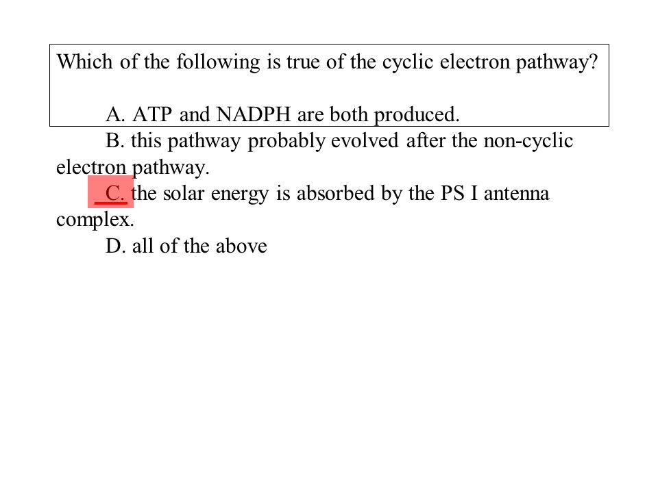Which of the following is true of the cyclic electron pathway. A