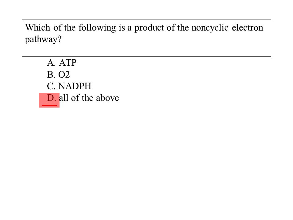 Which of the following is a product of the noncyclic electron pathway